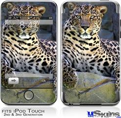 iPod Touch 2G & 3G Skin - Leopard Cropped