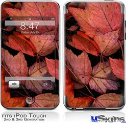 iPod Touch 2G & 3G Skin - Fall Tapestry